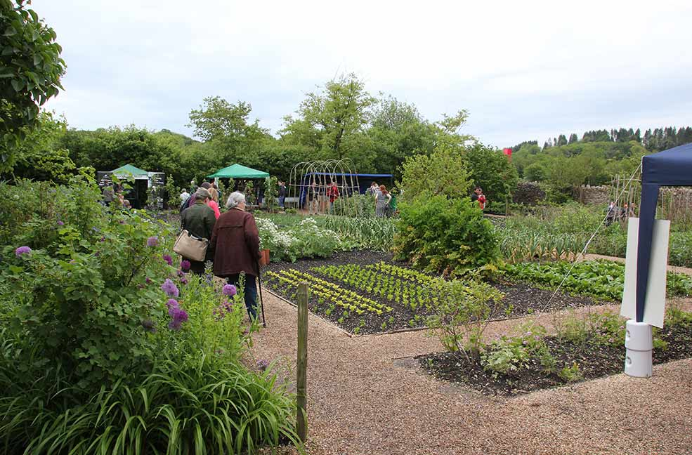 River Cottage kitchen garden