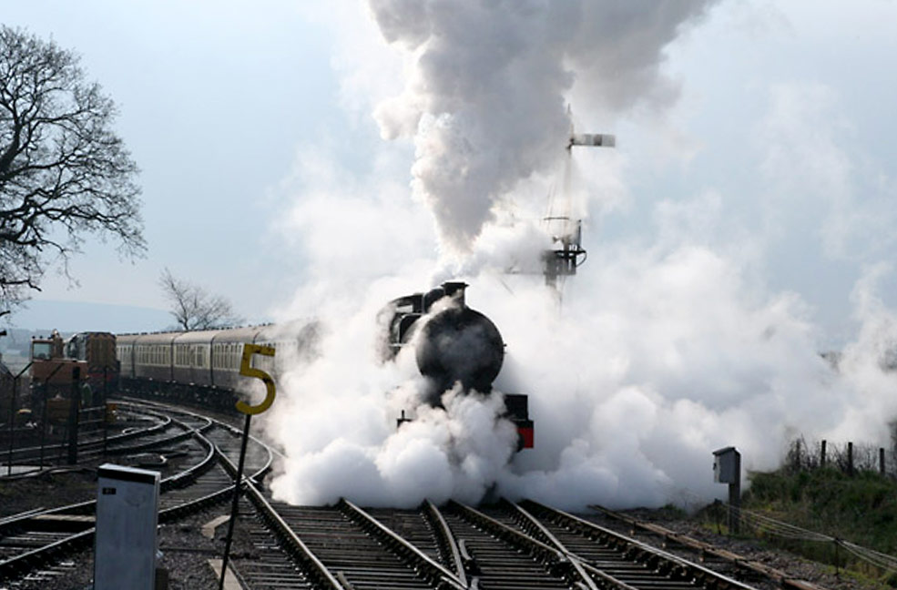 Best places for trainspotting in Somerset