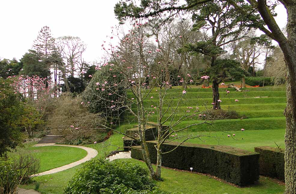 Dartington Hall terraced gardens