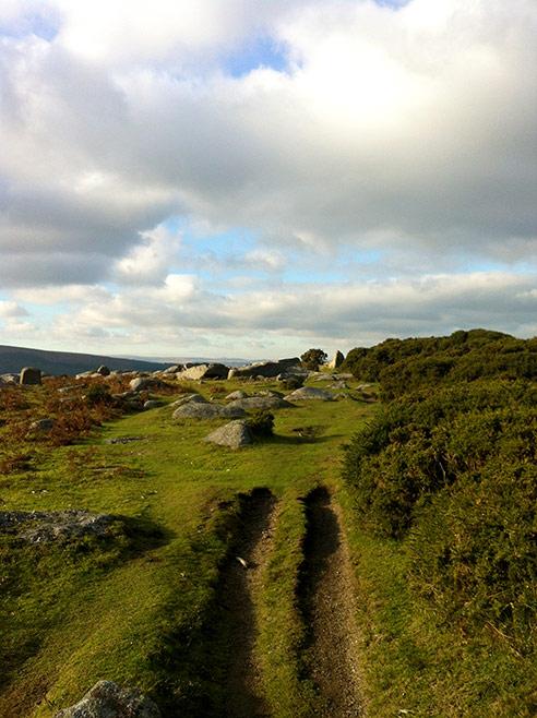 Gorgeous moorland walk