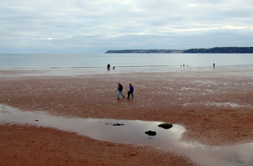 Paignton dog friendly beach