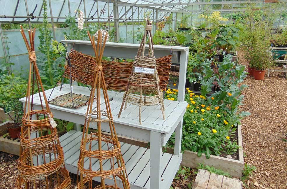 Buckfastleigh garden centre