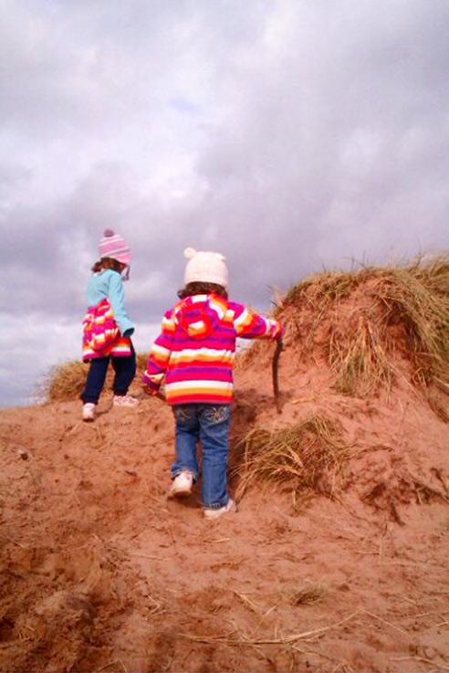 Dawlish dunes
