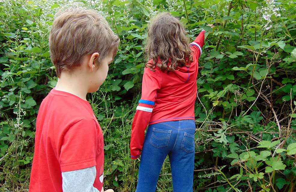 Foraging is a great way to get kids enjoying the Great Outdoors.
