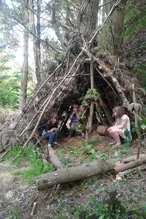 Den building in the forest