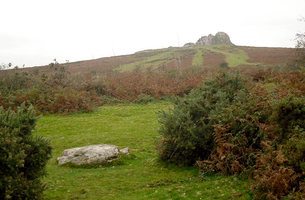 Newton Abbot Dartmoor tor