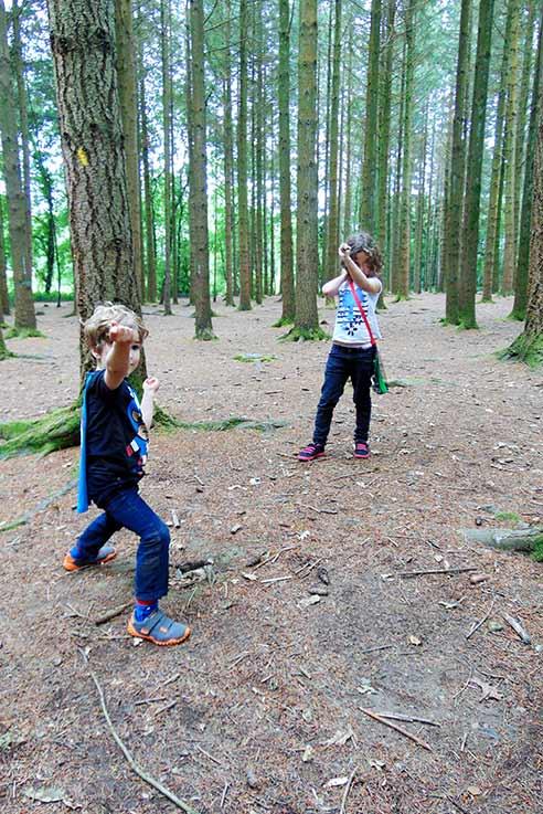 Newton Abbot woodland walk