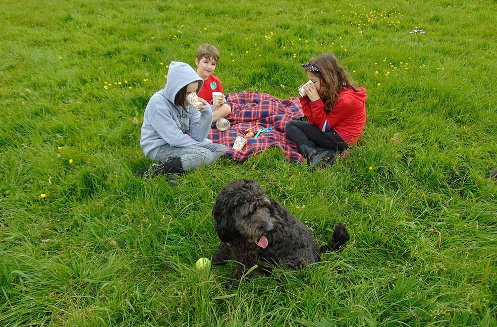 Perfect picnic places in south Devon