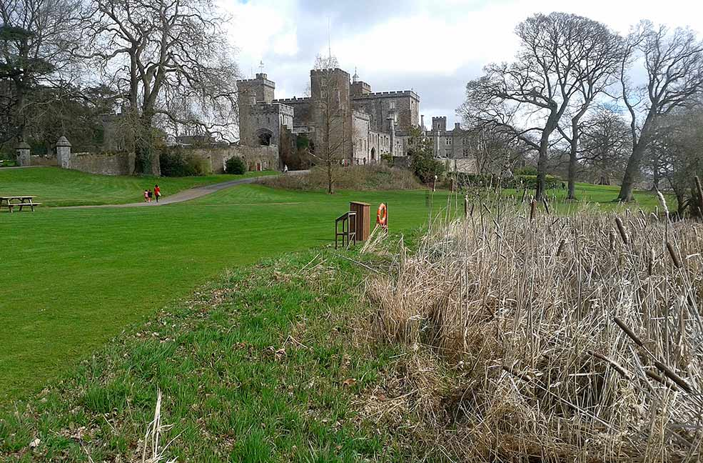 Rented pineapples and unicorn horns: A family day out at Powderham Castle