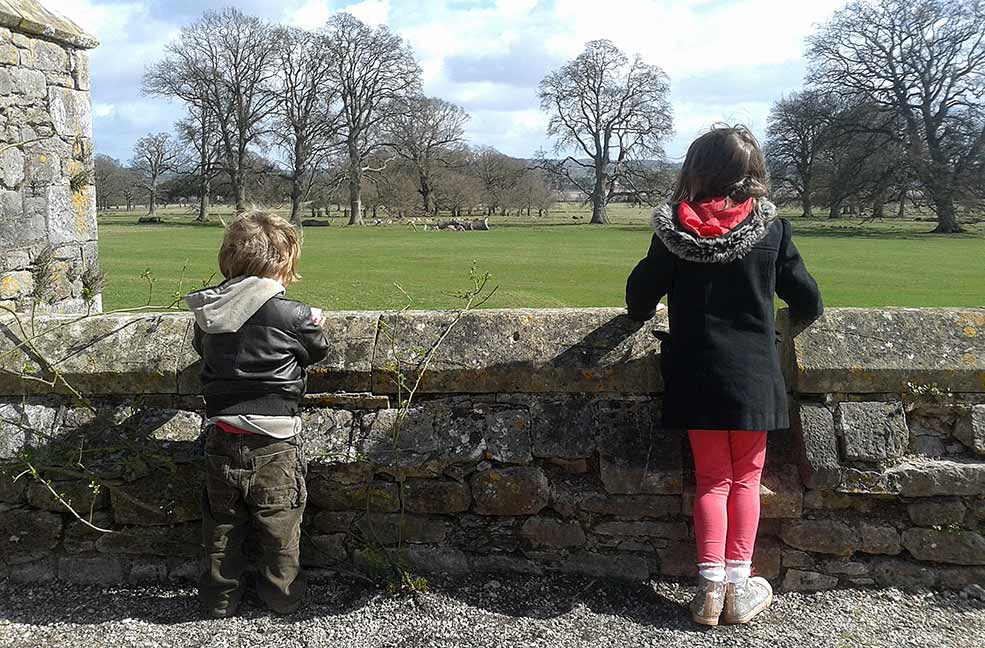 Powderham Castle family day out