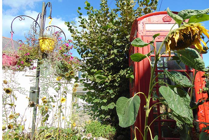 The traditional red phone box decorated with flowers in Stoke Gabriel.