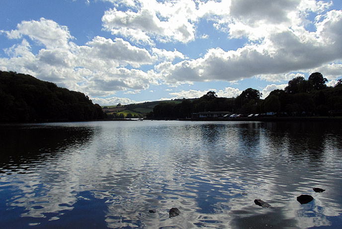The Mill pond is a peaceful place to walk around on your visit to Stoke Gabriel in Devon.
