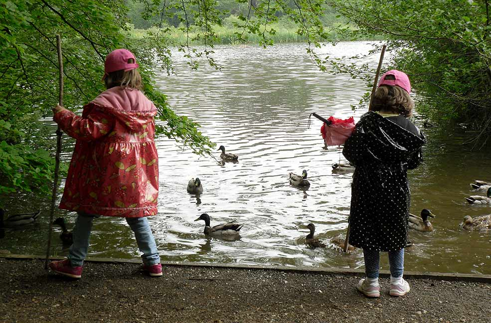 Family Holidays: A fat frog, a blue-tit, an armadillo and a Gruffalo