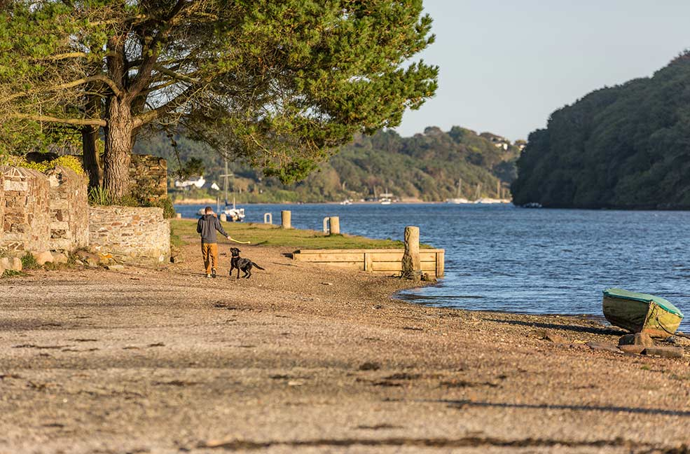 5 Dog-friendly walks with pubs in Cornwall