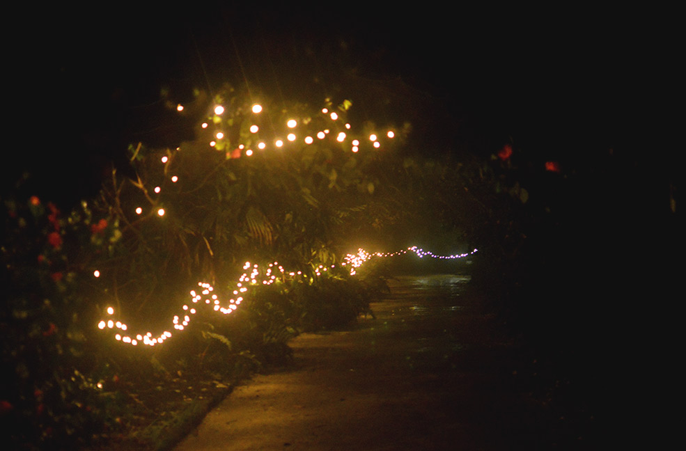 Fairylights lit the route to our feast night.