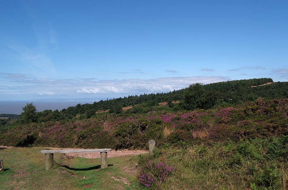 The Quantocks and a bench