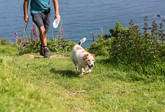 Explore the Cornish coast path
