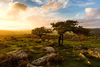 Enjoy a sunset over Dartmoor